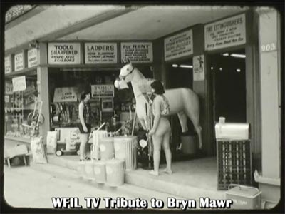 screen shot shows the white horse statue in the entrance to a Bryn Mawr hardware store