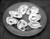 plate with oysters on their shells arranged in a circle